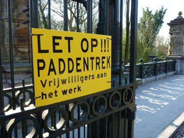 Bord over de paddentrek